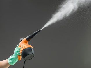 small steam cleaners